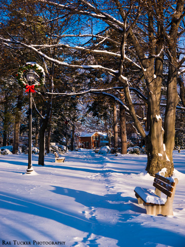A snowy park is adorned with wreaths in Oakville, Ontario