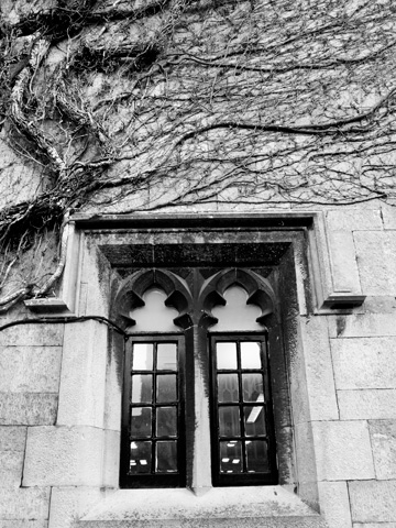 A window in the main building of the National University of Ireland in Galway during the winter