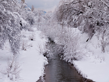 A wintery river scene in Sofia, Bulgaria