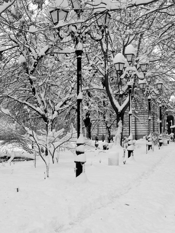 Snow covers lamp posts and trees in Sofia, Bulgaria