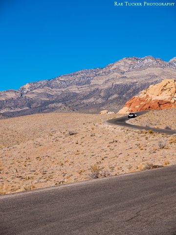 A road runs through Red Rock Canyon in Nevada.