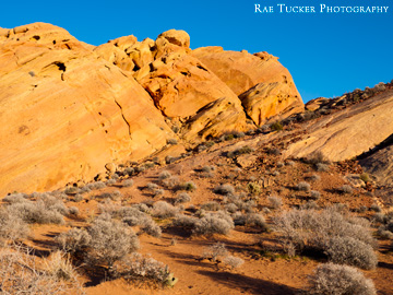 part of the Rainbow Vista path in the Nevada State Park Valley of Fire