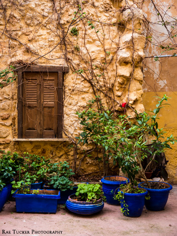 A stone wall with wooden shuttered window and plants potted in blue, clay pots.