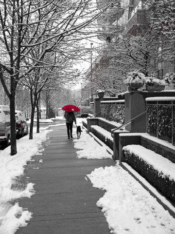 A red umbrella stands out on a snowy, city street