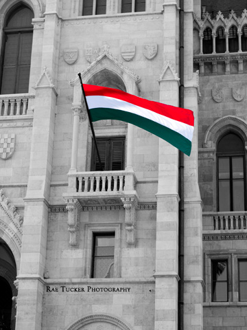 The red, white and green of the Hungarian flag flies against and black and white background.