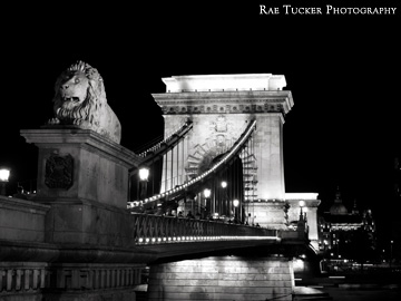 A black and white image of the Chain Bridge at night in Budapest, Hungary