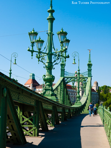 The green Liberty Bridge in Budapest, Hungary
