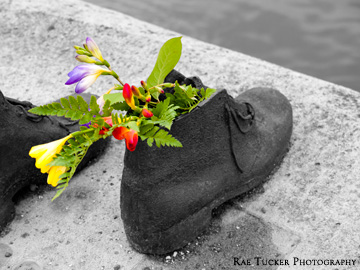 In Budapest, Hungary an installation entitled Shoes on the Danube Bank honours those that were killed along the banks of the Danube River during WWII.