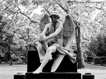 A black and white image of an angel in a cemetery in Budapest, Hungary
