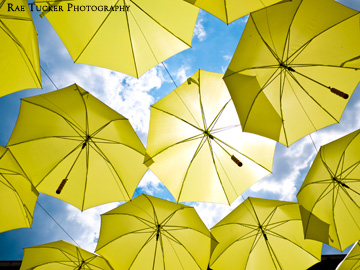 Yellow umbrellas provide protection from the bright sun.