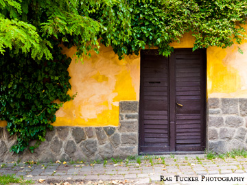 In the summer, this entrance is shaded by greenery in Szentendre, Hungary