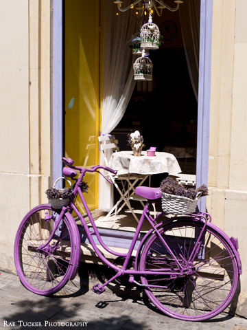 A bicycle painted purple carries a basket full of dried Lavender in Budapest, Hungary