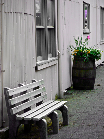 An alley on Granville Island with a park bench and a flowr barrel