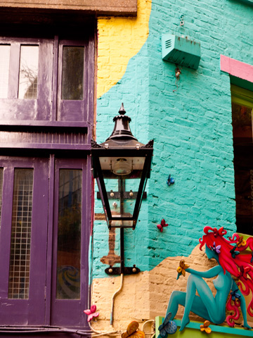 Neal's yard colours and fairy
