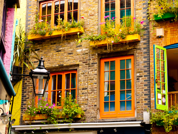 The vibrant colors of Neals Yard in London, England