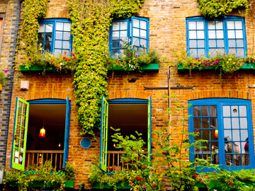 Windows painted bright green and blue in London, UK