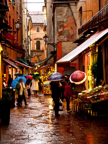 Umbrella-clad shoppers within the Quadrilatero district in Bologna, Italy