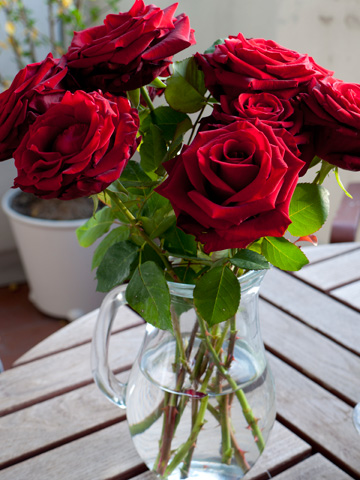 A clear vase of red roses