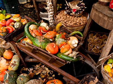 Squash, nuts and other autumn produce at a market in Rome, Italy