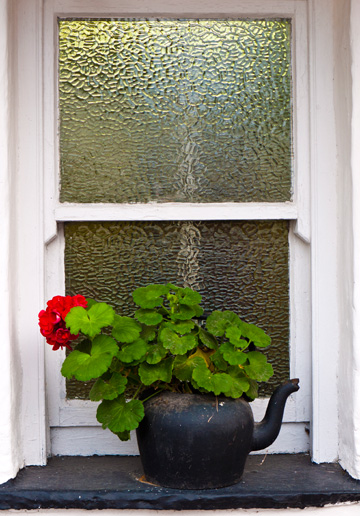 Geraniums planted in a black kettle on a window sill.