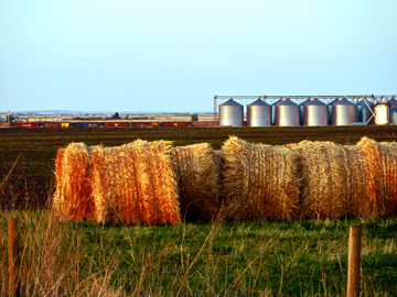 Symbols of the Canadian Prairies, CP Rail train, grain elevators and rolled hay bales in Alberta