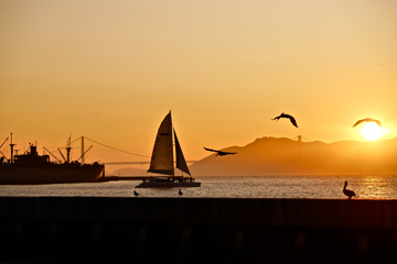 The sun setting over the bay, a sailboat, pelicans, Golden Gate Bridge and a freighter