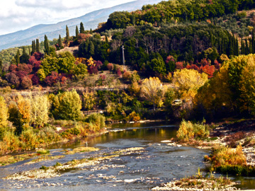 The Arno river surrounded by Tuscan autumn foliage