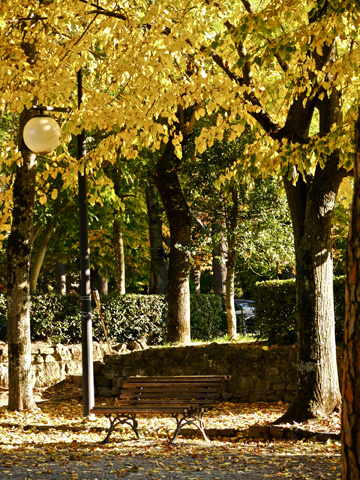 Park bench and street light in a park in Arezzo, Italy
