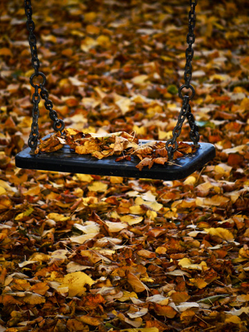 Leaf covered playground swing during the autumn in Bucine, Italy.