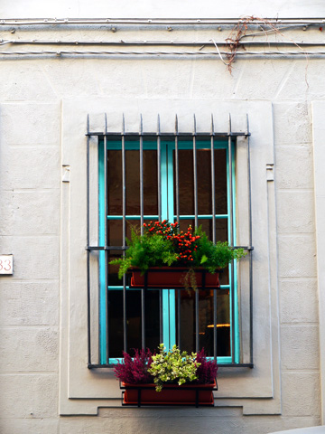 Autumn flower boxes hang on a colorful window in Florence, Italy