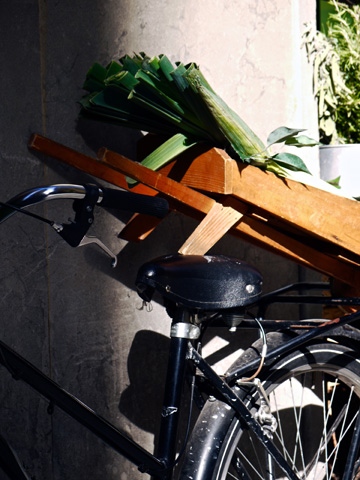 A bicycle carrying leeks in Florence, Italy