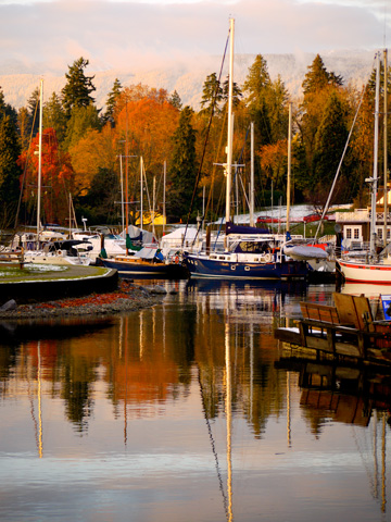 A harbour sits in front of Stanley Park in the autumn in Vancouver, British Columbia, Canada.