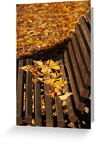 Autumn Greeting Cards