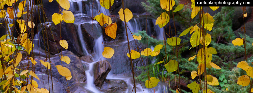 Autumn leaves and waterfall Free Facebook Banner